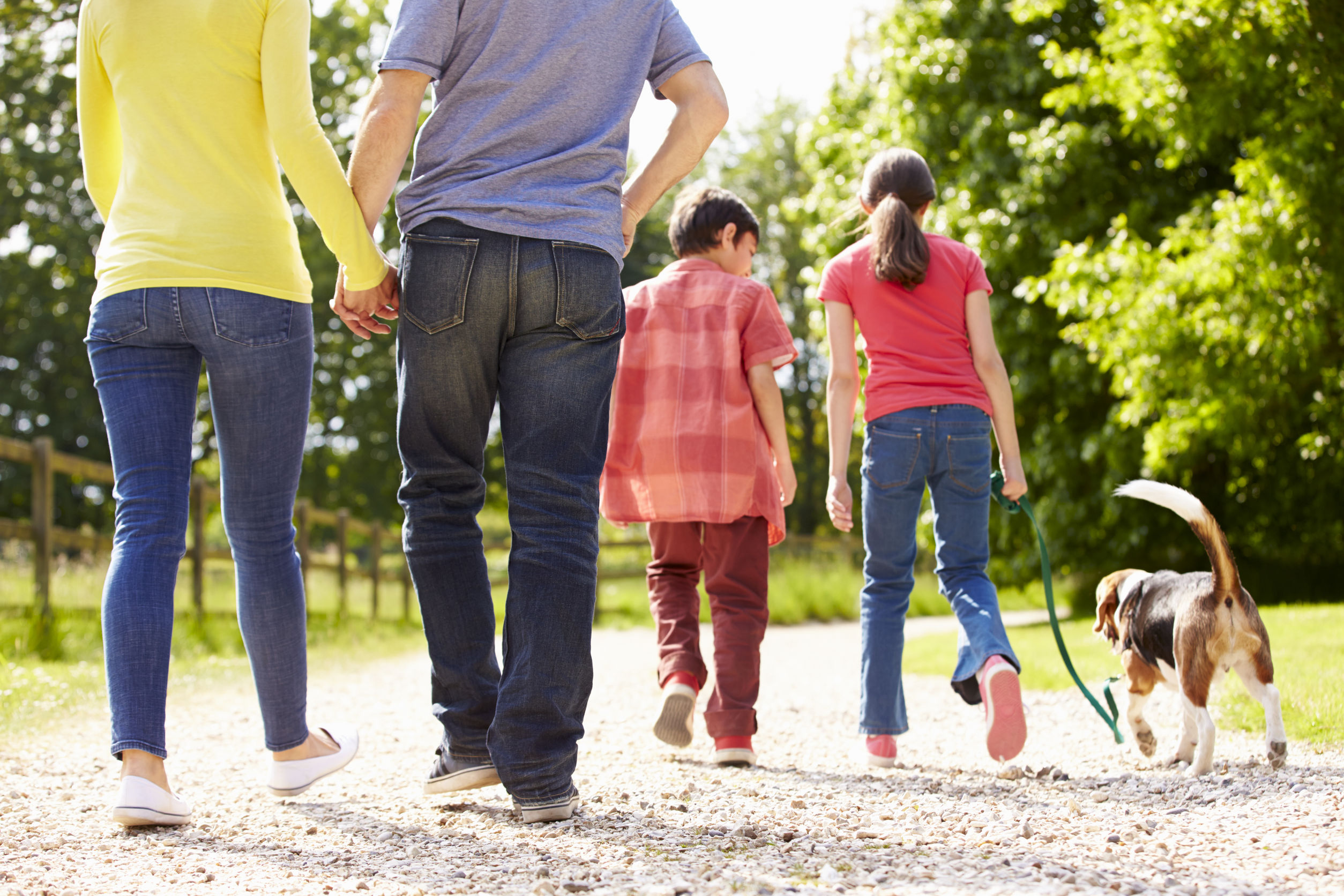 family taking a walk on a nature trail