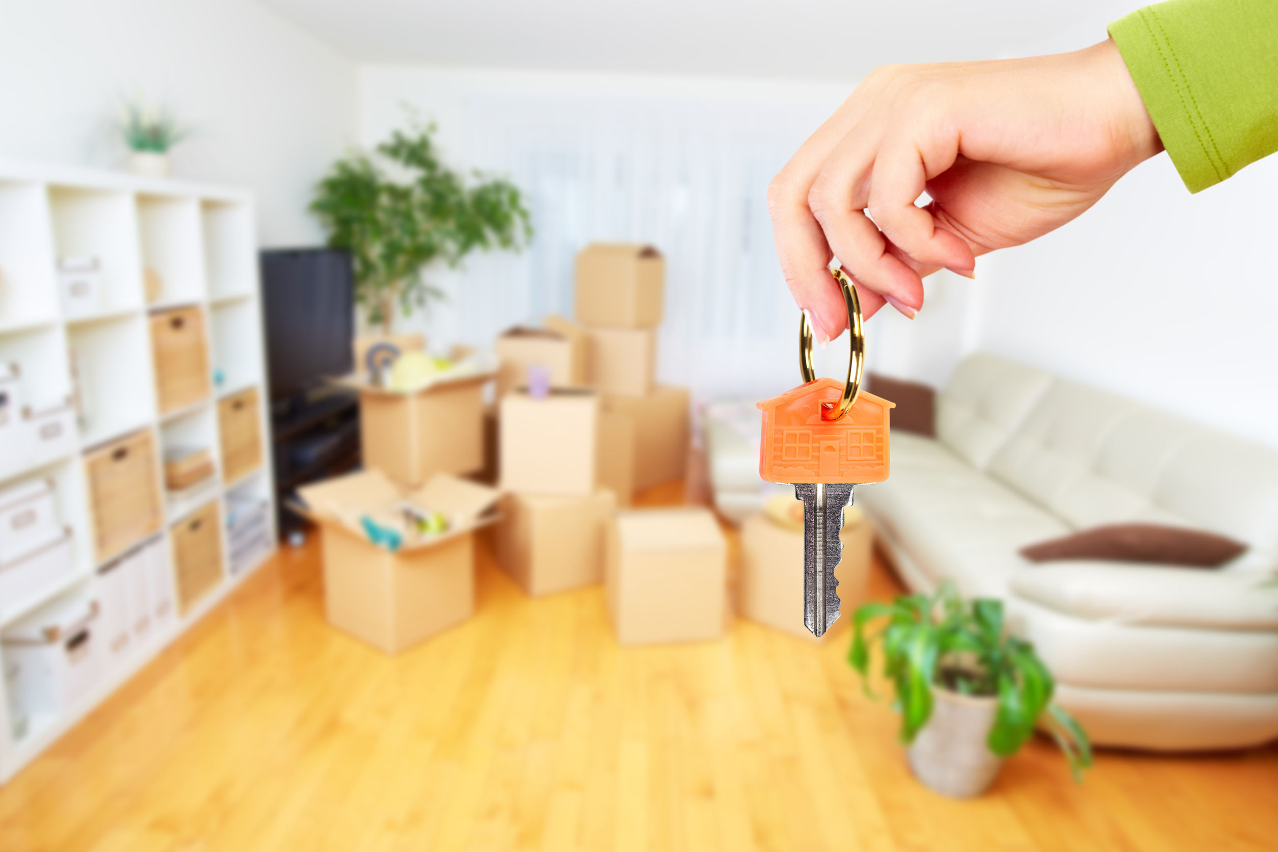 Keys to a house or apartment