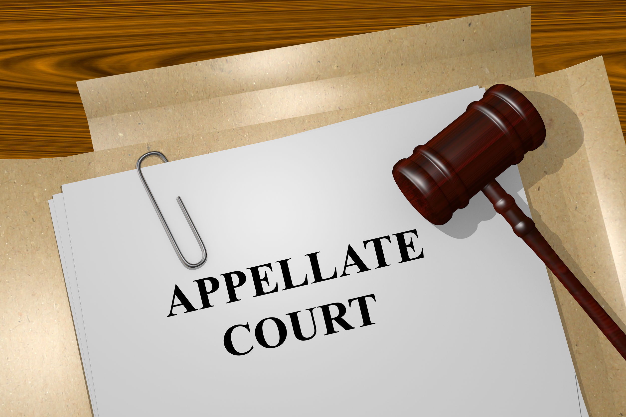 Appellate Court written on file folder